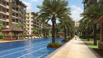 large-the-birchwood-residences-acacia-estates-lap-pool